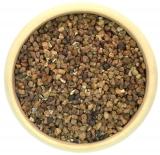 Cardamom Samen aus der Schale